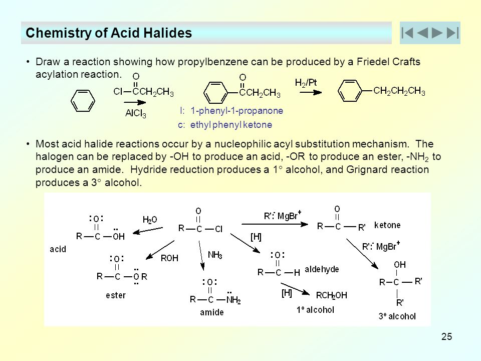 Derivatives of Carboxylic Acid - ppt download