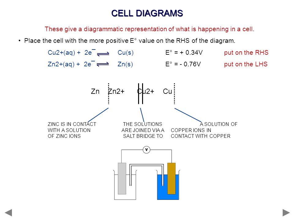 Ppt electrode potentials ppt video online download 15 cell diagrams ccuart Image collections