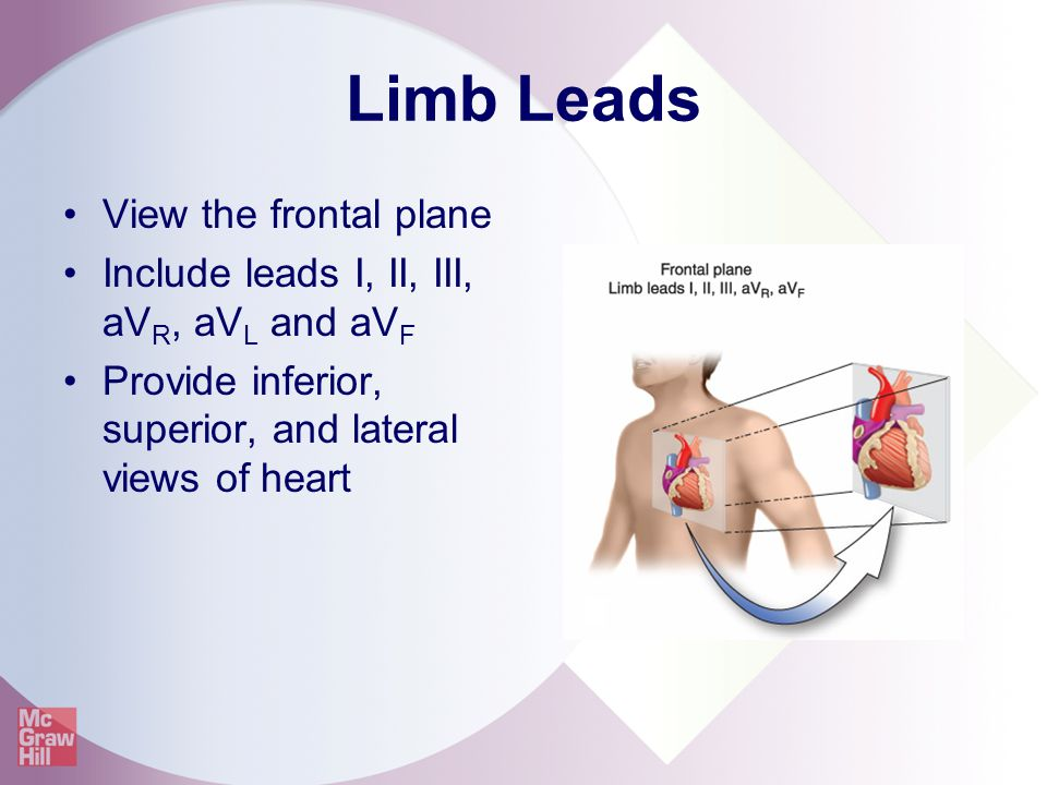 Limb Leads View the frontal plane