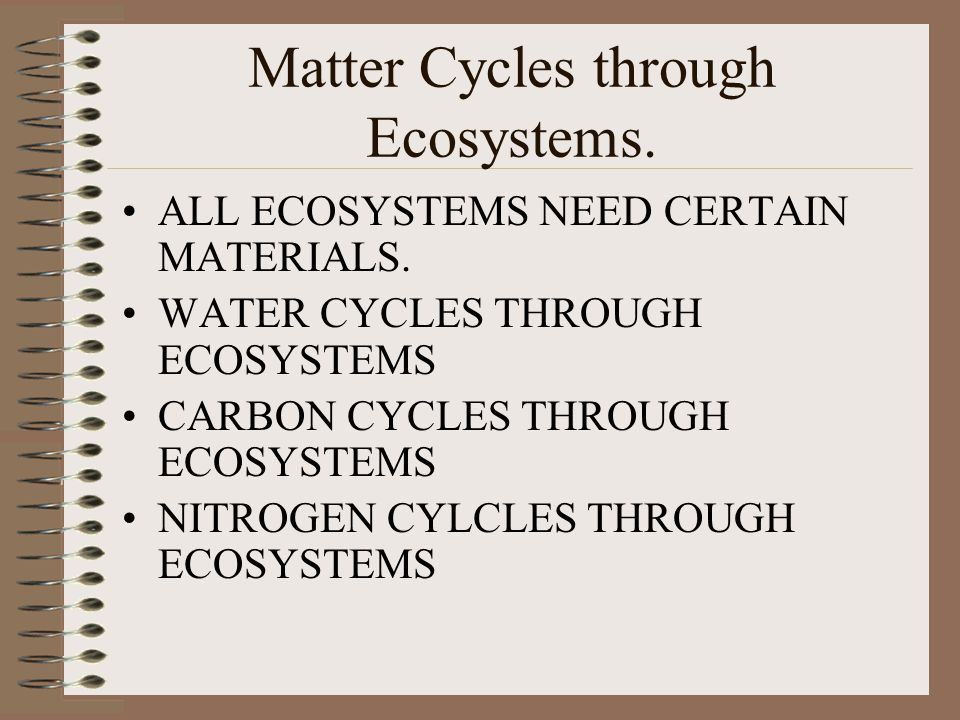 Matter Cycles through Ecosystems.