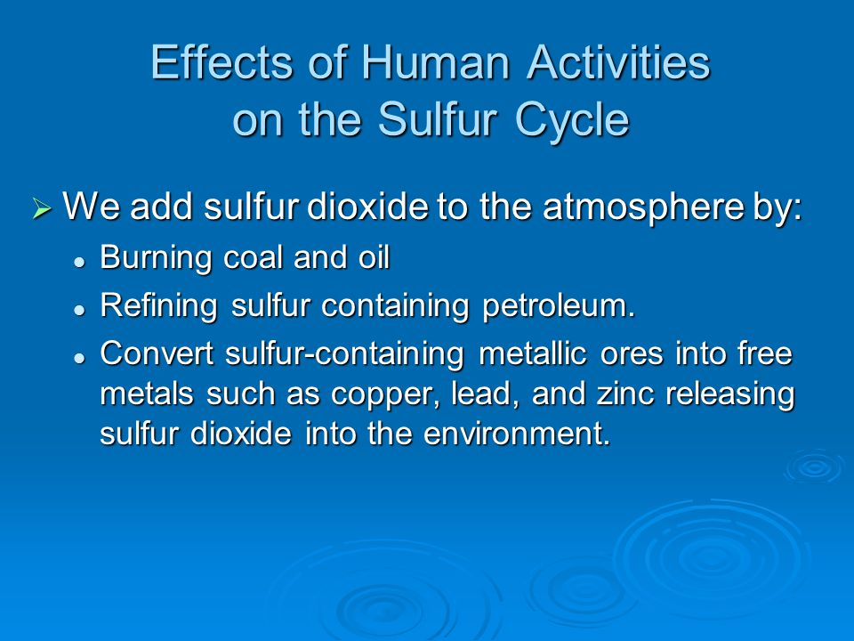 Effects of Human Activities on the Sulfur Cycle