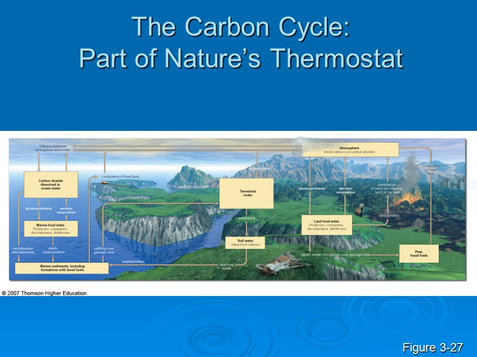 The Carbon Cycle: Part of Nature's Thermostat