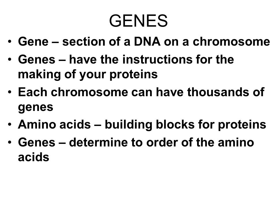 GENES Gene – section of a DNA on a chromosome