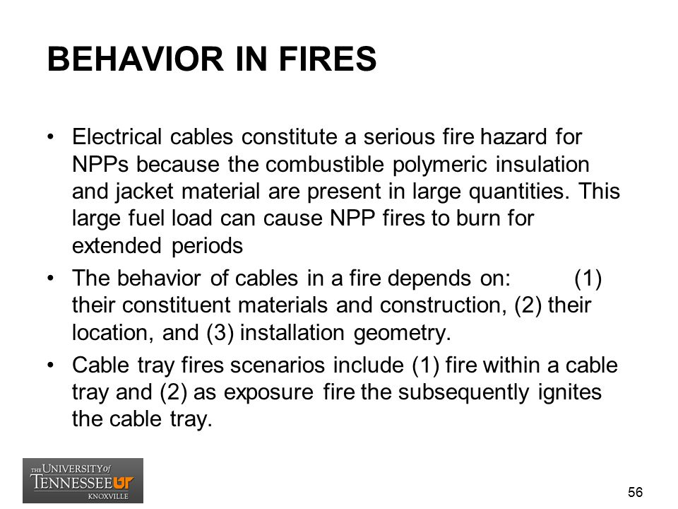 BEHAVIOR IN FIRES