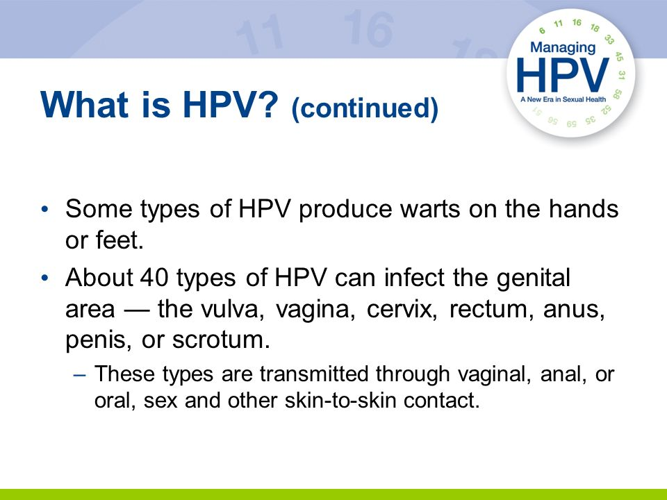 What is HPV (continued)