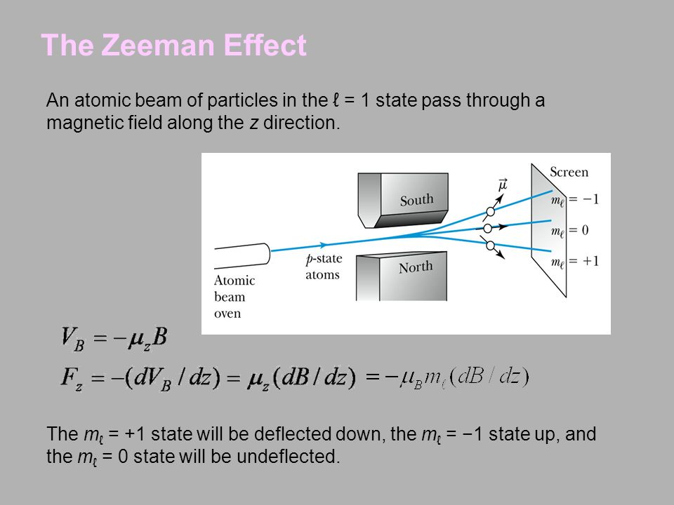 The Zeeman Effect An atomic beam of particles in the ℓ = 1 state pass through a magnetic field along the z direction.