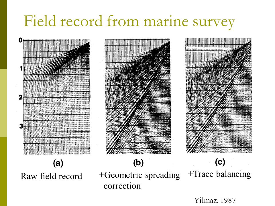 Field record from marine survey