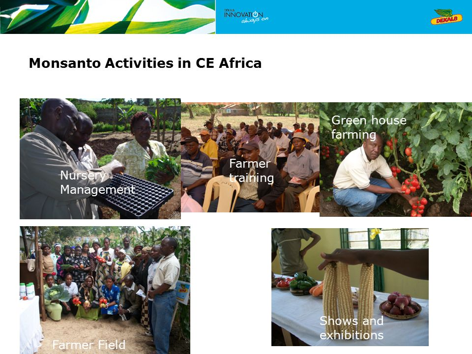 Monsanto Activities in CE Africa