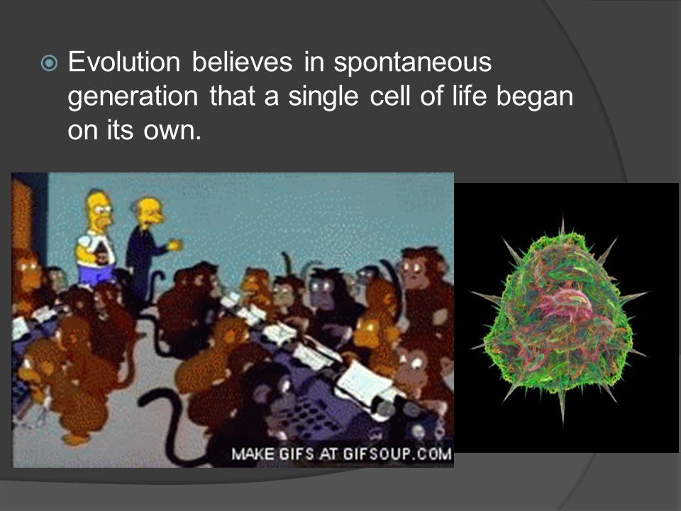 Evolution believes in spontaneous generation that a single cell of life began on its own.