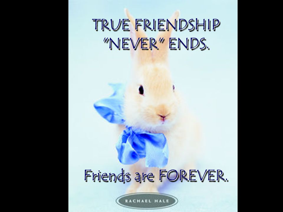 TRUE FRIENDSHIP NEVER ENDS. Friends are FOREVER.