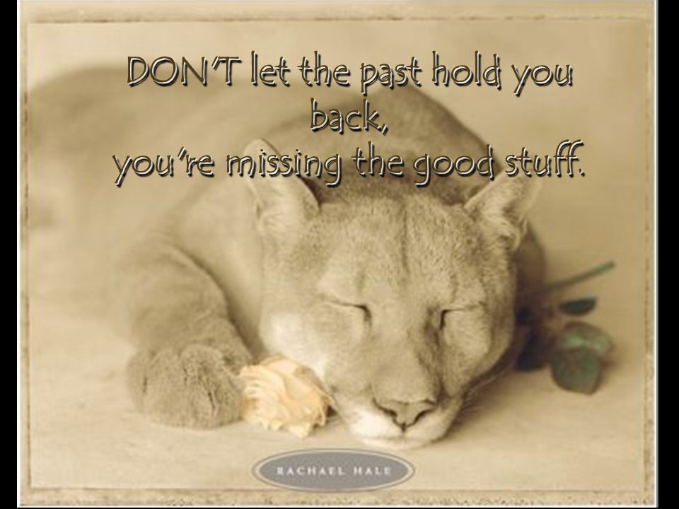 DON T let the past hold you back, you re missing the good stuff.