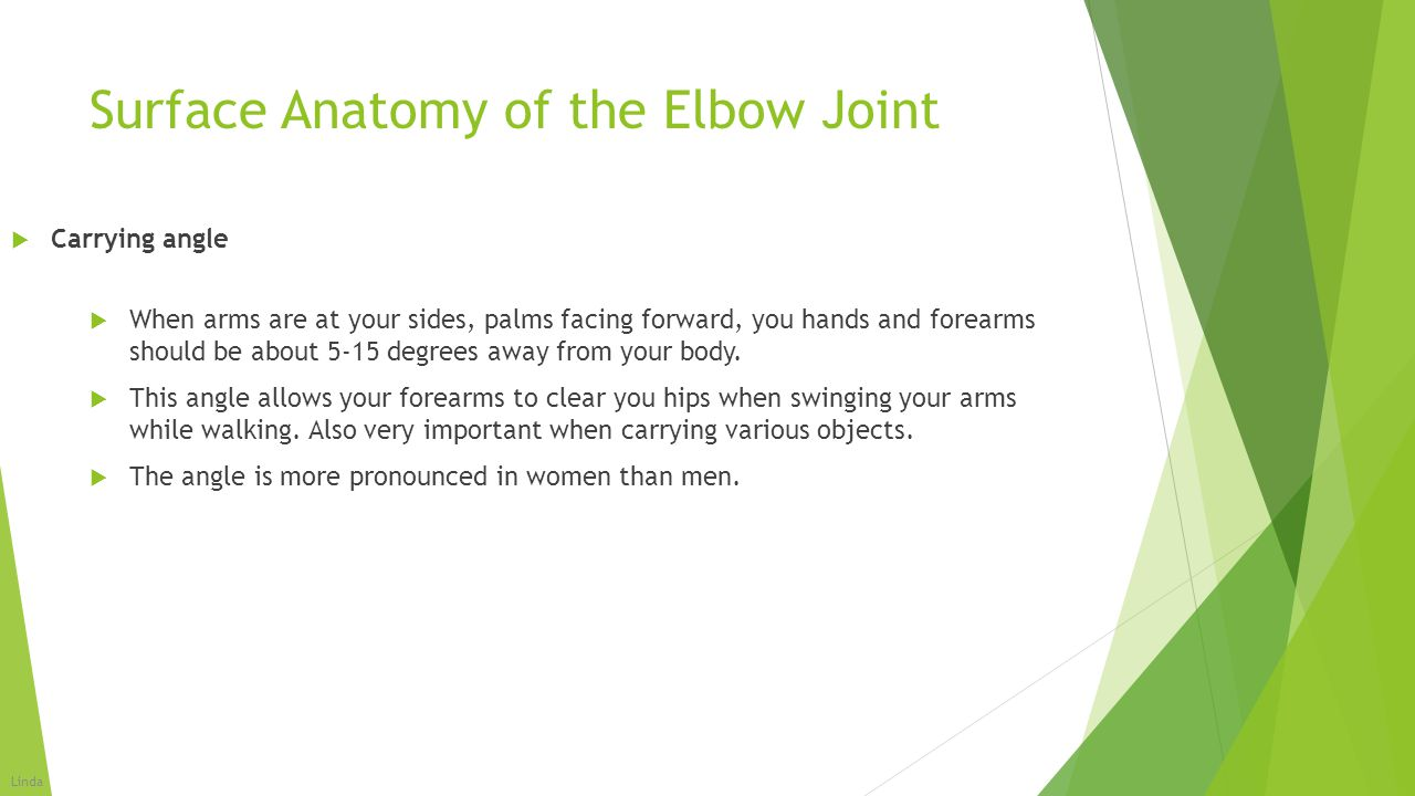 Elbow(Humeroulnar) Joint - ppt video online download