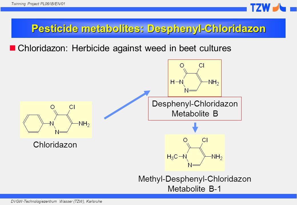 Pesticide metabolites: Desphenyl-Chloridazon