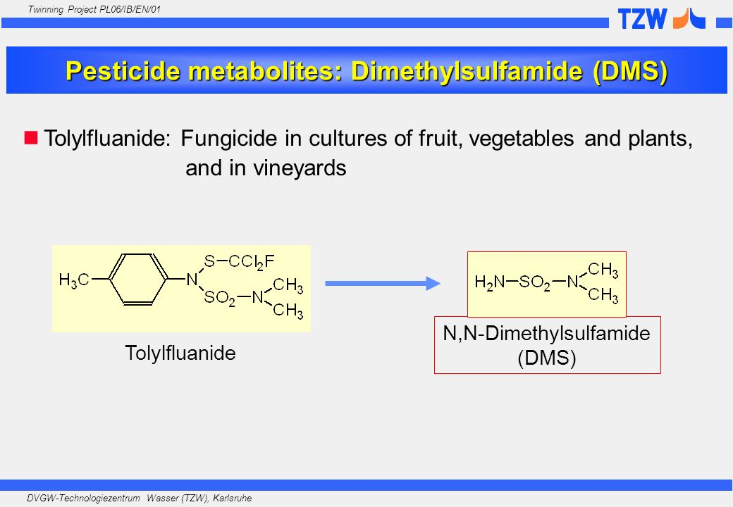 Pesticide metabolites: Dimethylsulfamide (DMS)