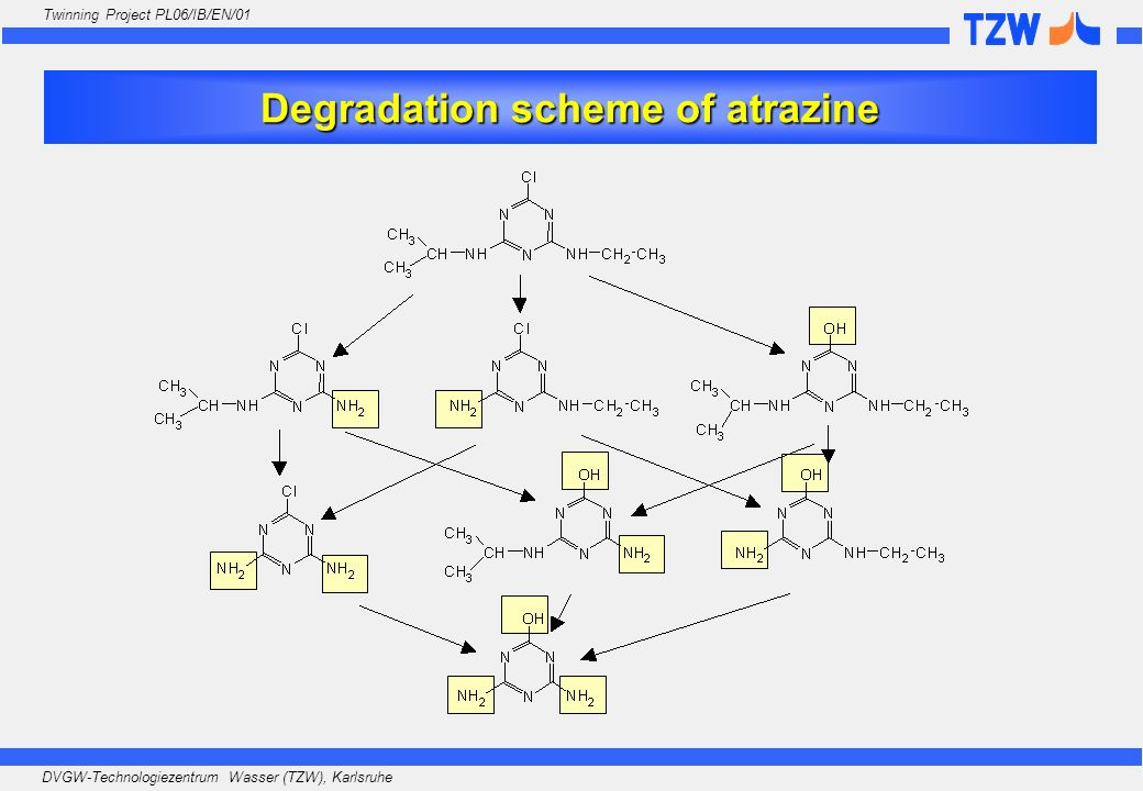 Degradation scheme of atrazine