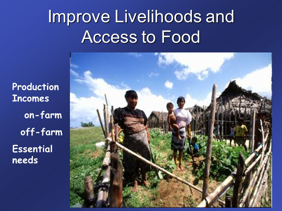 Improve Livelihoods and Access to Food