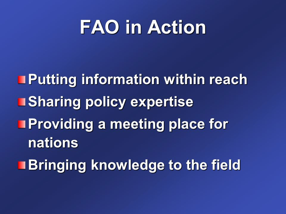 FAO in Action Putting information within reach