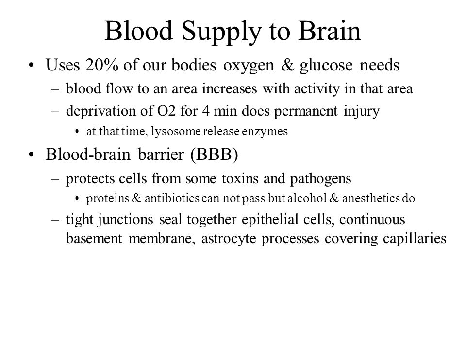 Blood Supply to Brain Uses 20% of our bodies oxygen & glucose needs