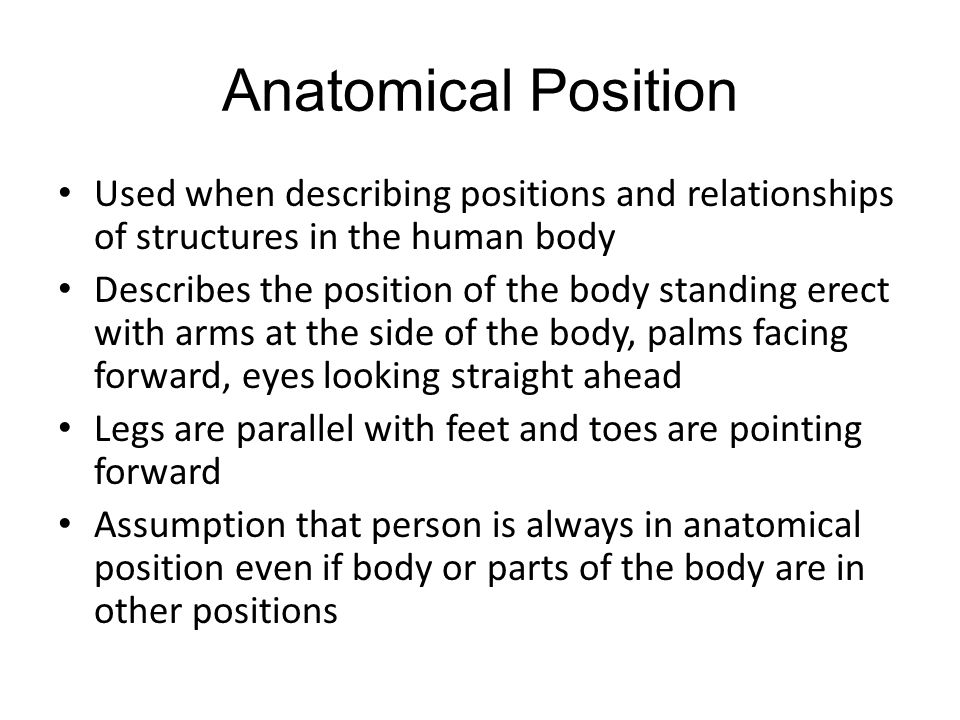 Medical Terminology Lesson 2 Anatomy And Physiology Ppt Video