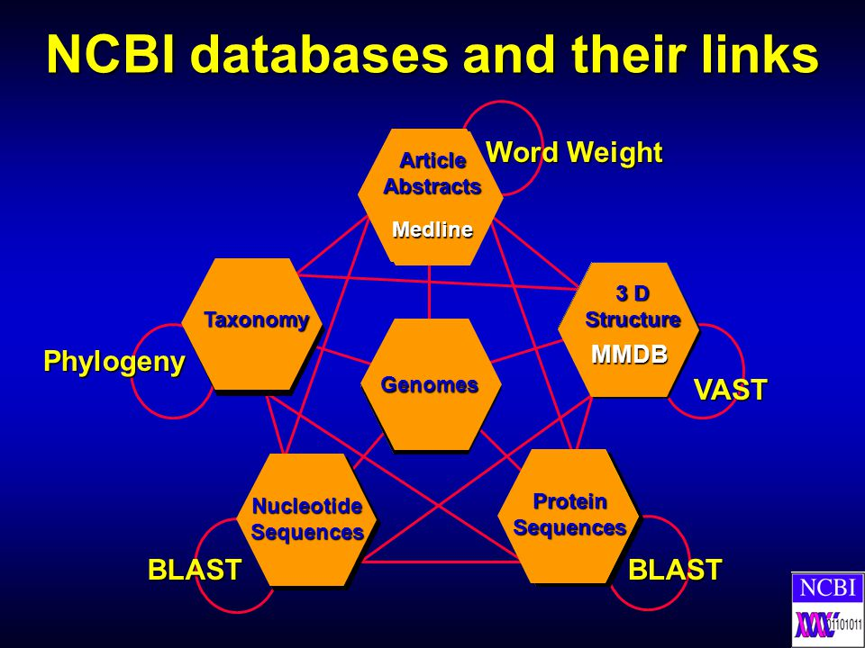 NCBI databases and their links