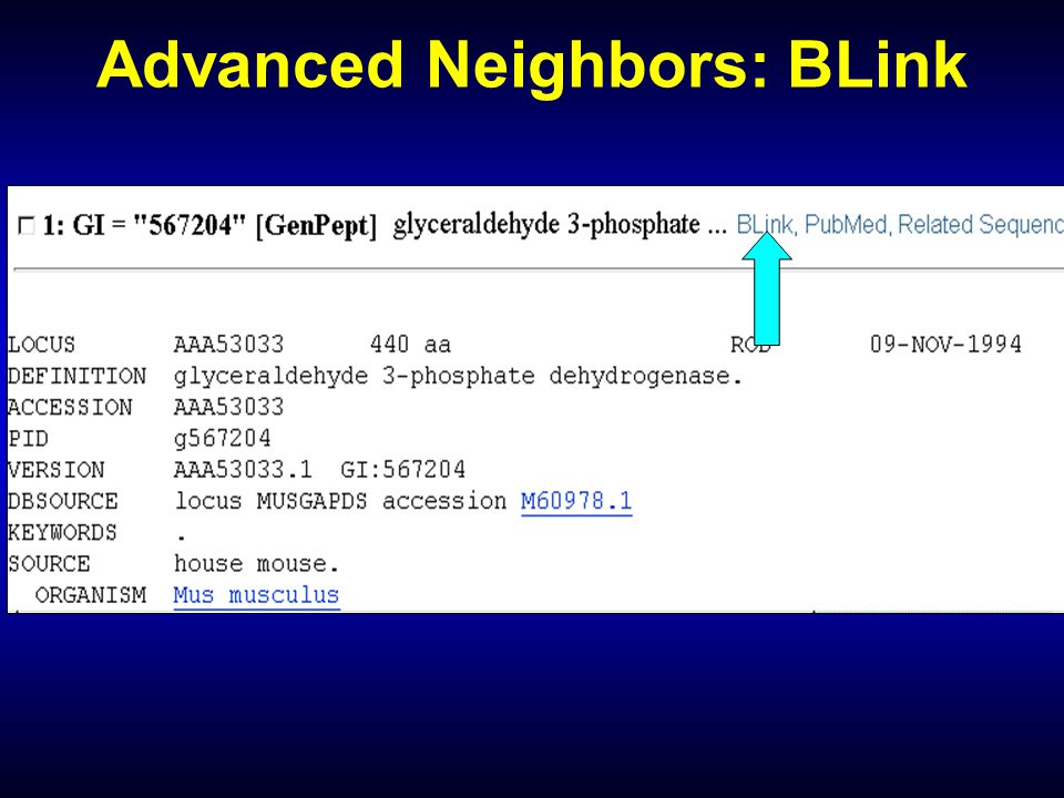 Advanced Neighbors: BLink
