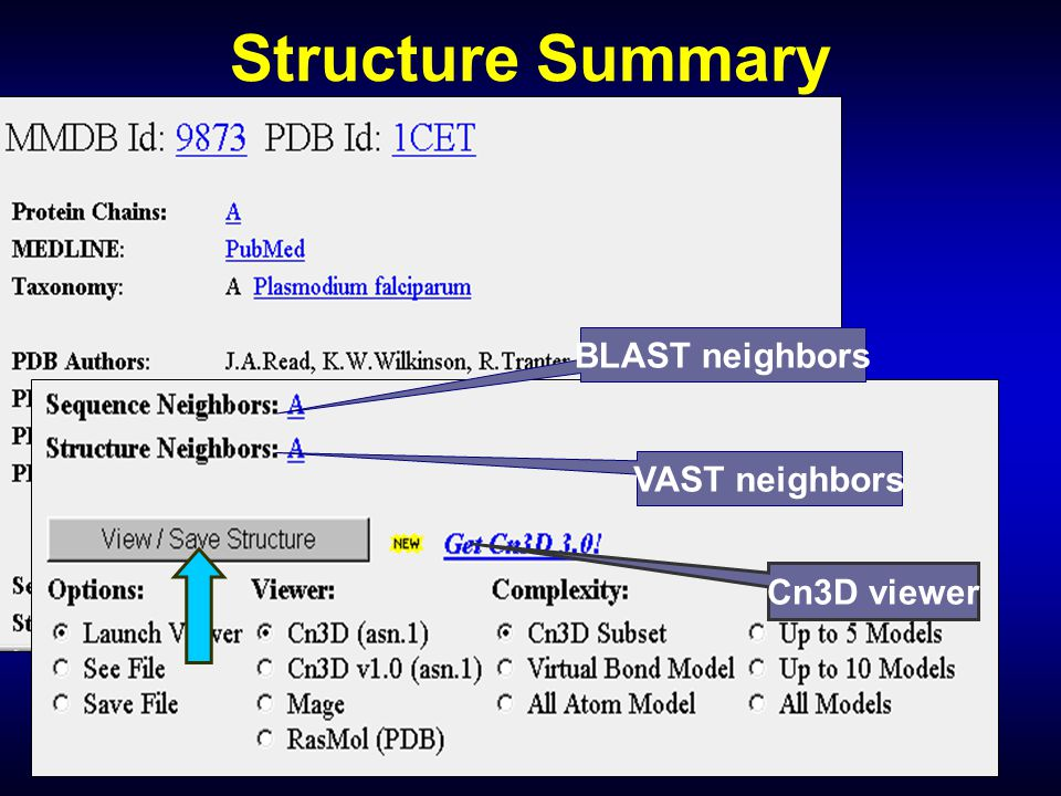 Structure Summary BLAST neighbors VAST neighbors Cn3D viewer