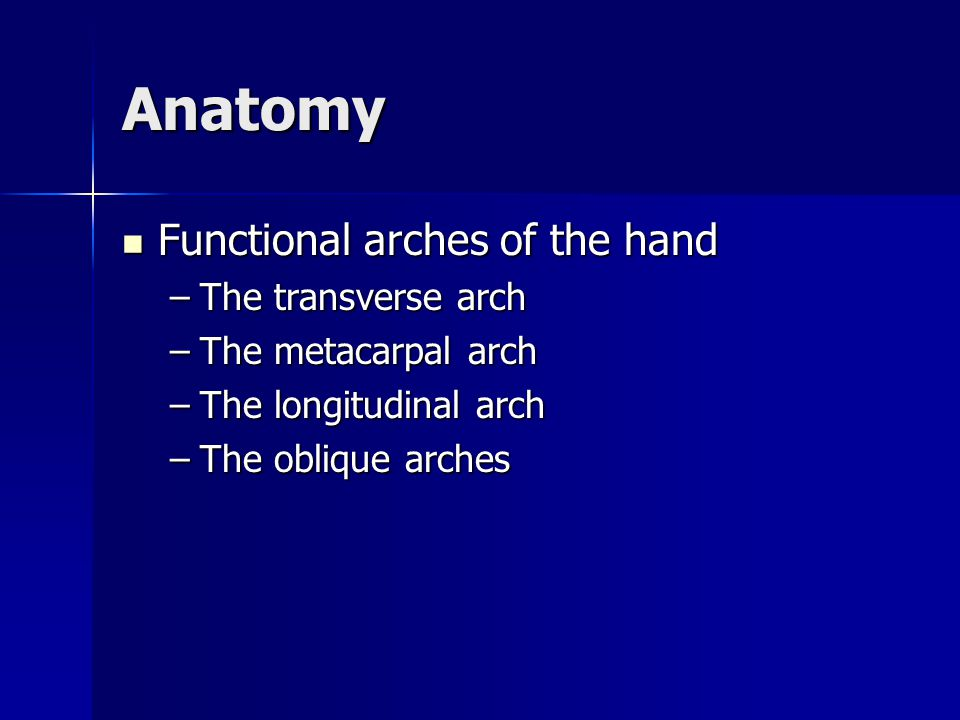 Chapter 16 Forearm, Wrist and Hand. - ppt video online download
