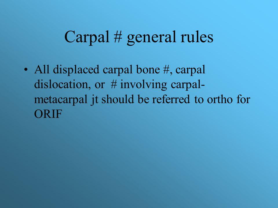 rule of the bone pdf download