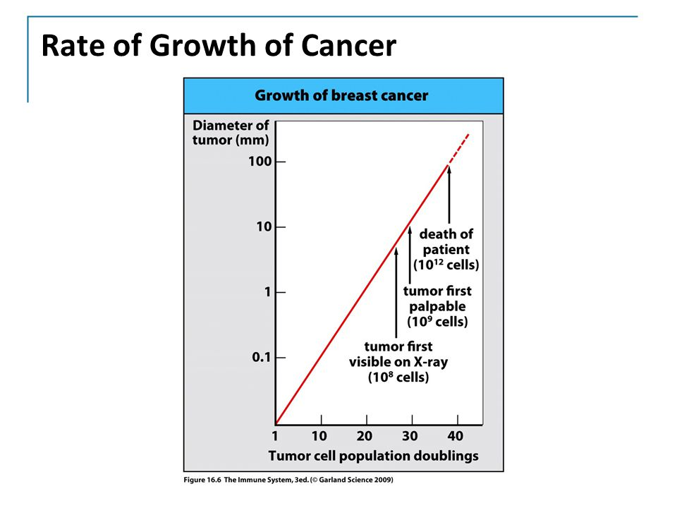 Rate of Growth of Cancer