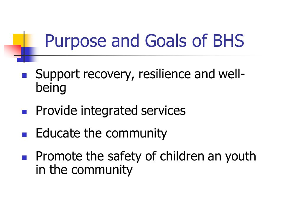 Purpose and Goals of BHS