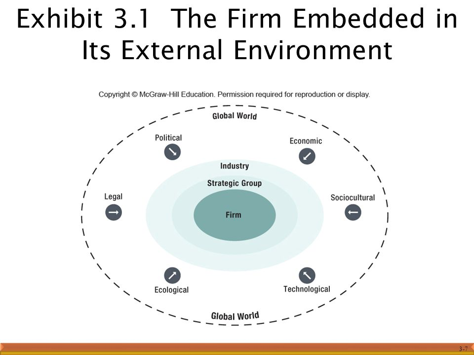 Exhibit 3.1 The Firm Embedded in Its External Environment