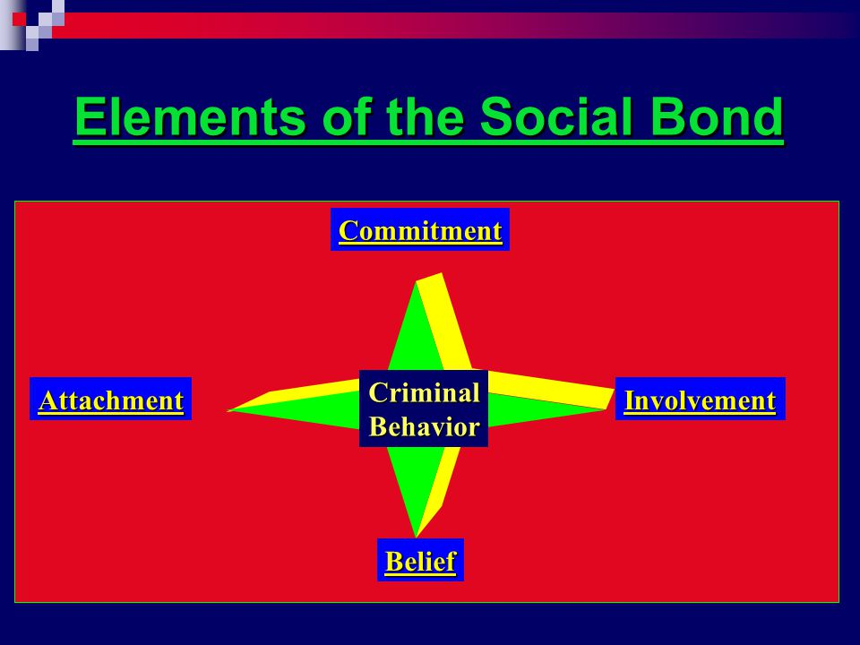Elements of the Social Bond