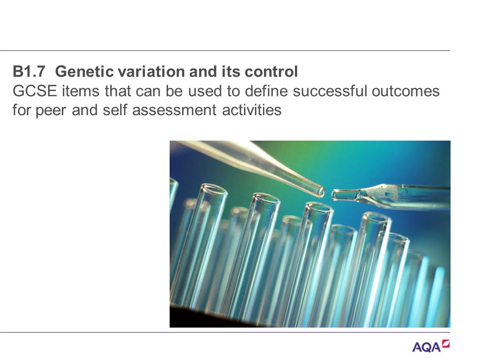 B1.7 Genetic variation and its control