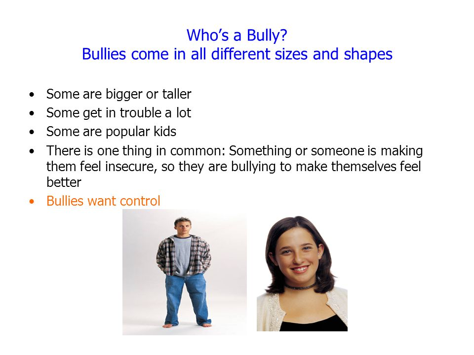 Who's a Bully Bullies come in all different sizes and shapes