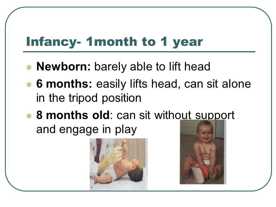 Infancy- 1month to 1 year Newborn: barely able to lift head