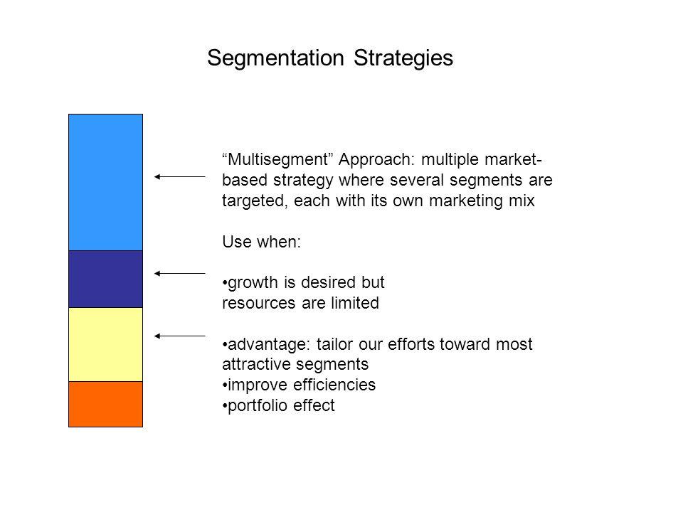 multi segment strategy