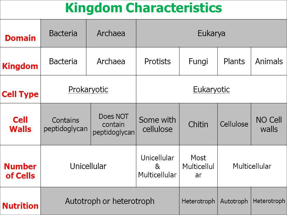 Kingdom Characteristics
