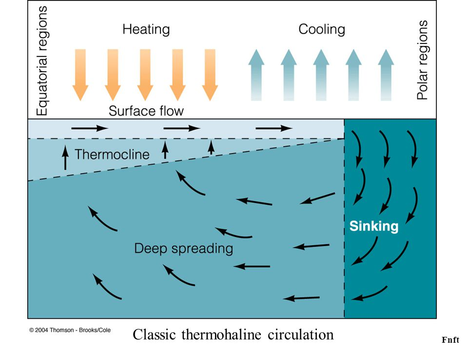 Classic thermohaline circulation