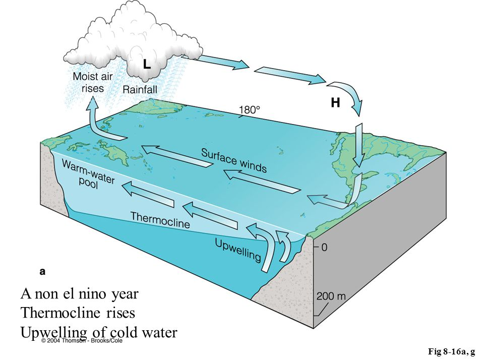 Upwelling of cold water