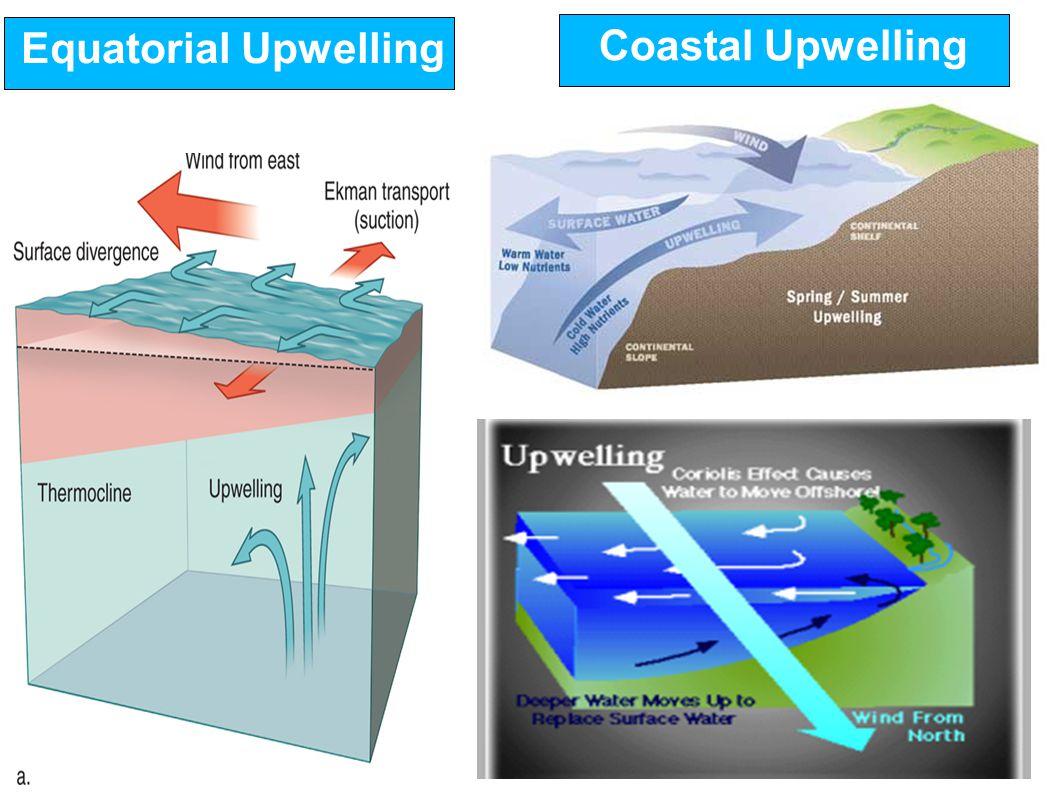 Coastal upwelling features over arabian sea from roms model ppt 26 equatorial upwelling coastal upwelling ccuart Choice Image