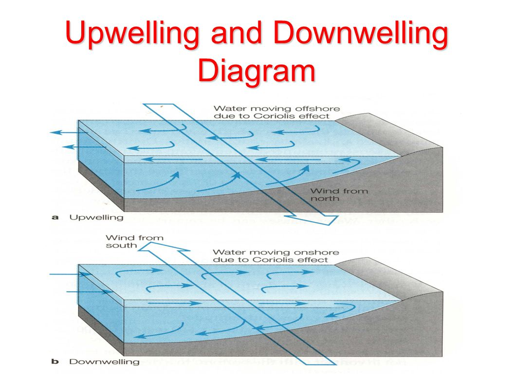 Coastal upwelling features over arabian sea from roms model ppt 33 upwelling and downwelling diagram ccuart Choice Image
