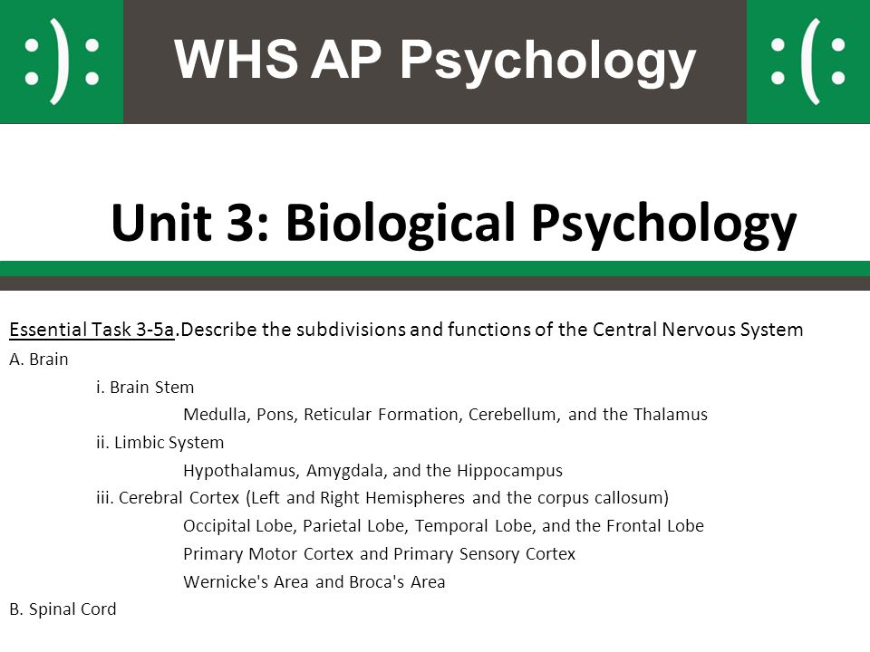Unit 3: Biological Psychology
