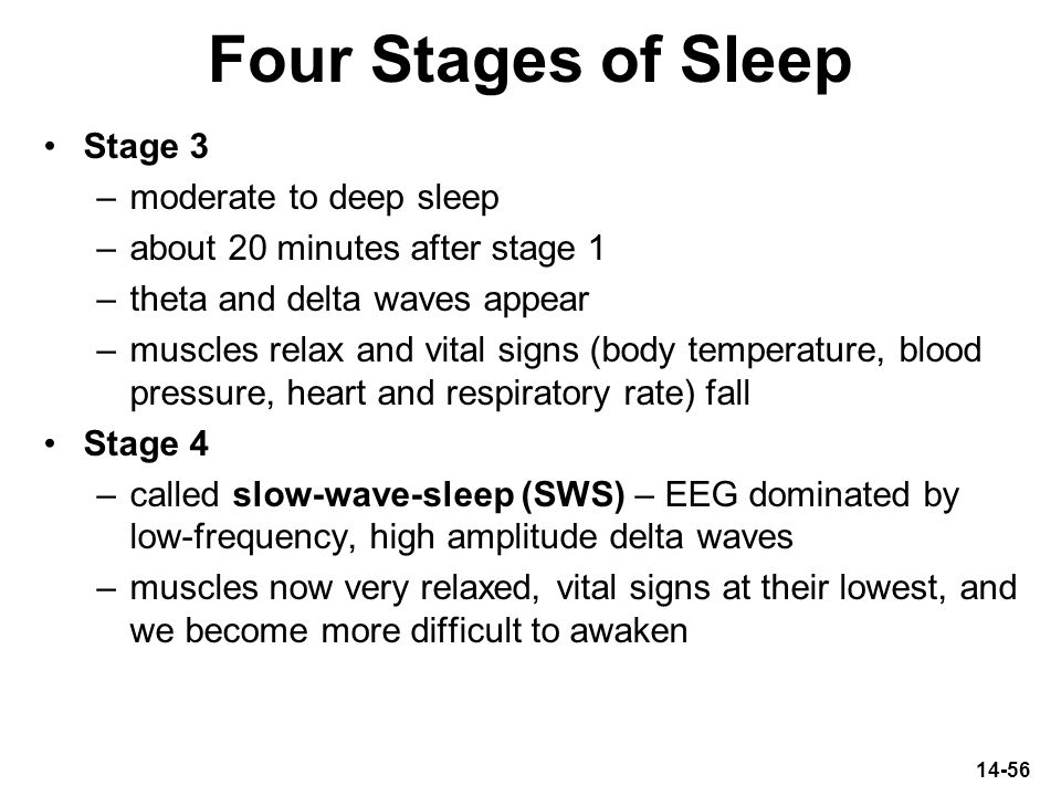 Four Stages of Sleep Stage 3 moderate to deep sleep