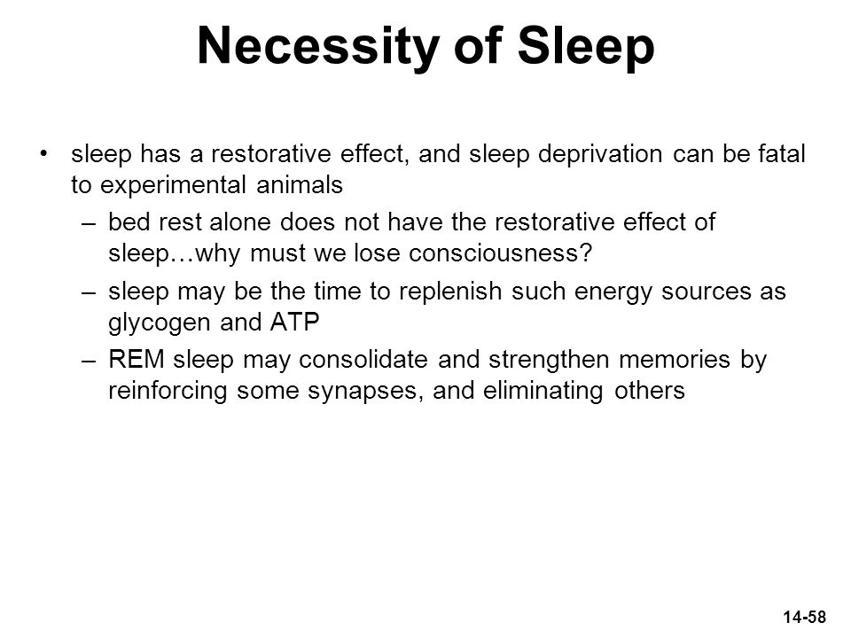 Necessity of Sleep sleep has a restorative effect, and sleep deprivation can be fatal to experimental animals.