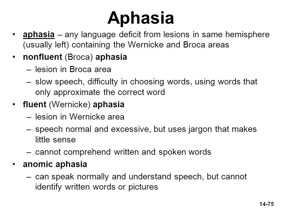Aphasia aphasia – any language deficit from lesions in same hemisphere (usually left) containing the Wernicke and Broca areas.