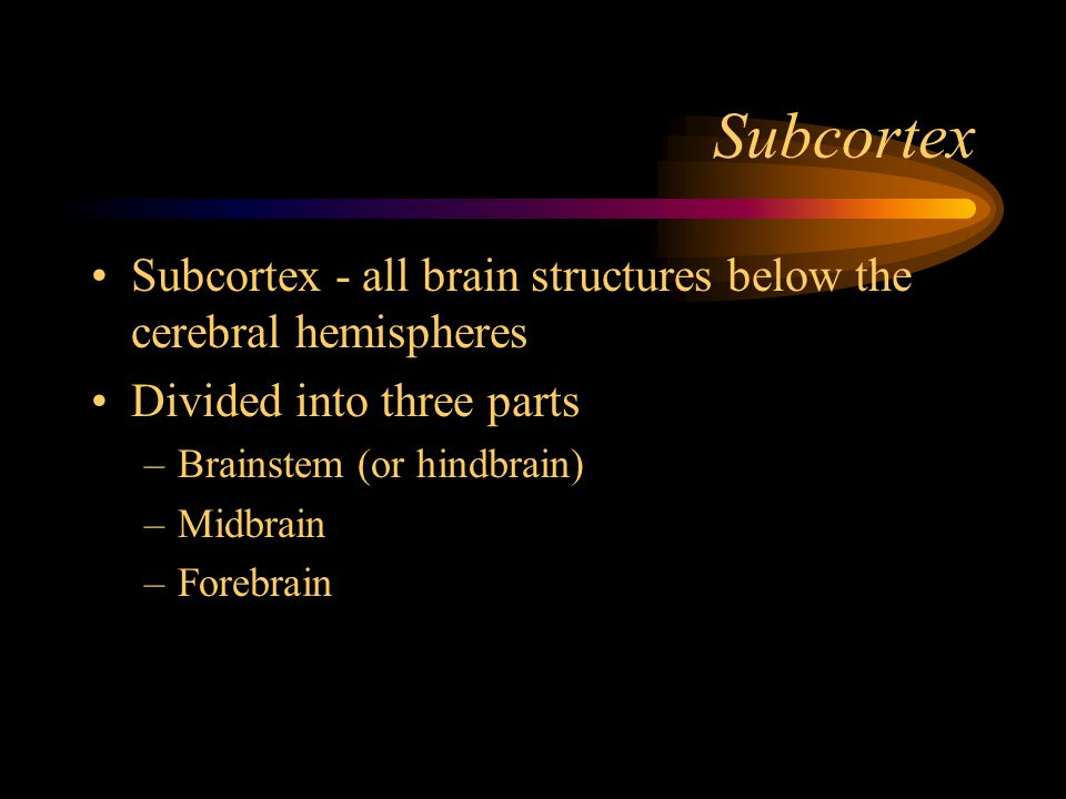 Subcortex Subcortex - all brain structures below the cerebral hemispheres. Divided into three parts.