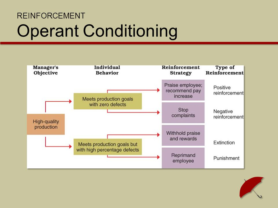 REINFORCEMENT Operant Conditioning