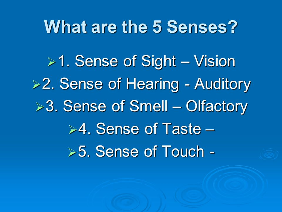 What are the 5 Senses 1. Sense of Sight – Vision