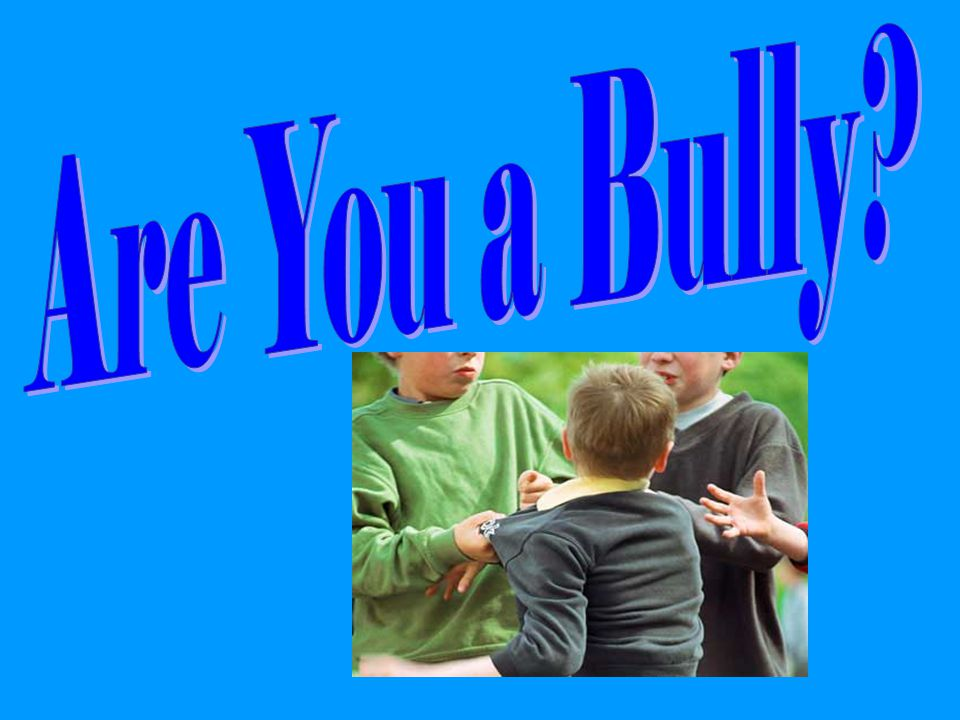 Are You a Bully