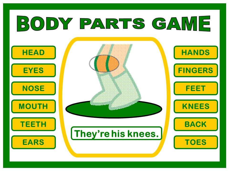 BODY PARTS GAME They're his knees. HEAD HANDS EYES FINGERS NOSE FEET